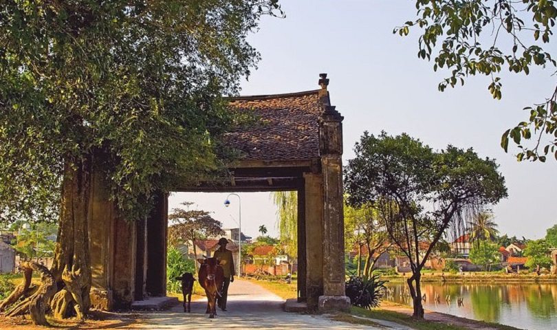 VISIT DUONG LAM VILLAGE ONE DAY TOUR