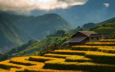 NORTHERN VIETNAM OVERTURE 7 DAYS