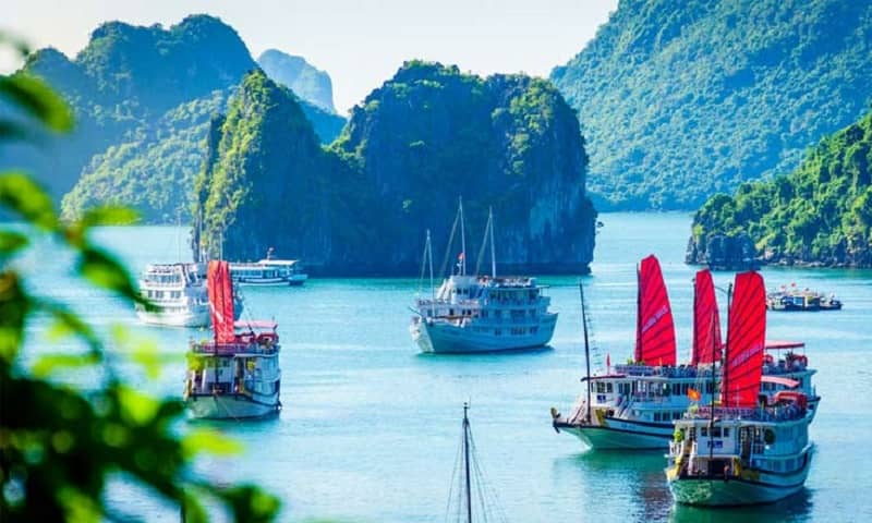 Vietnam Travel Agency list